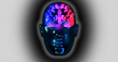 El cerebro es un continuo masculino-femenino
