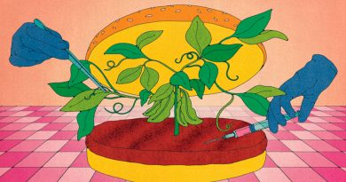 Carne híbrida para acelerar y abaratar las hamburguesas 'in vitro'