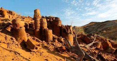 Fósil hallado en Uzbekistán reveló que existió un dinosaurio de 20 metros de alto