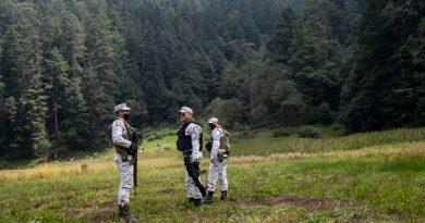 Entorno ecológico también es devastado por el covid-19: investigadora mexicana