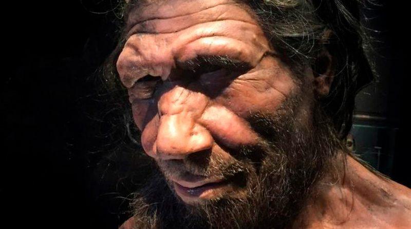 Encuentran evidencia de una especie antigua, híbrida entre seres humanos y neandertales