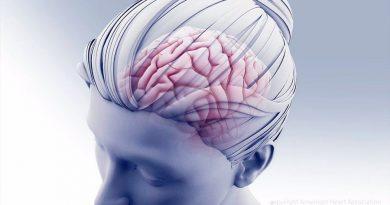 Una mayor capacidad intelectual mejora la resistencia a los daños cerebrales
