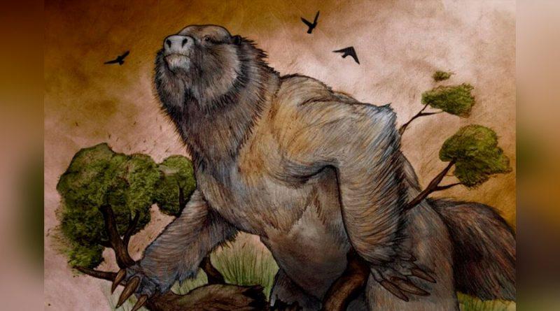 Hallan en la Argentina el cráneo de un perezoso ancestral tan grande como un elefante