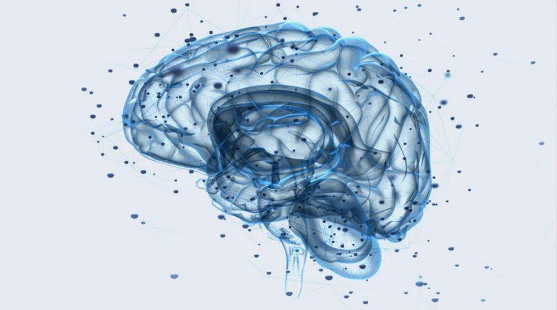 Revelan el impacto de la primera experiencia sexual en el cerebro