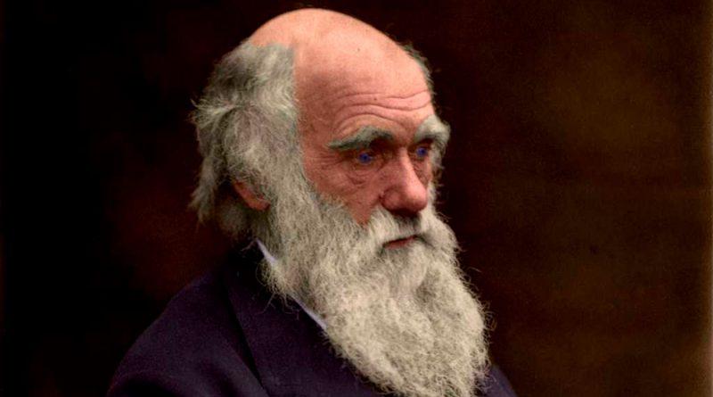 Darwin nació hace 212 años. Su pensamiento resumido en ocho citas