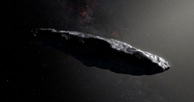 Revuelo mundial por el supuesto encuentro con una sonda alienígena