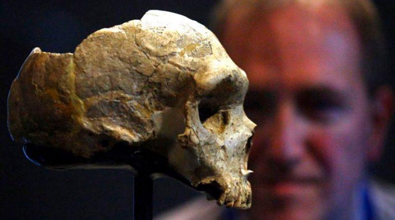 Nuevo hallazgo demuestra que el sexo entre Neandertales y Homo Sapiens fue más común de lo que se creía
