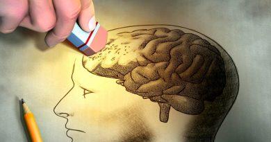 Cuánto tardamos en olvidar lo estudiado: la famosa curva del olvido