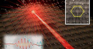 Un nuevo estado de la materia: los cristales hidrodinámicos