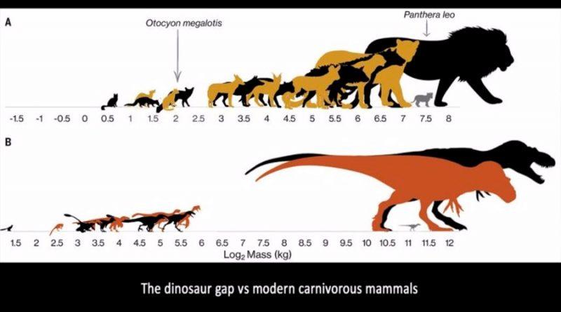Jóvenes T-Rex tiranizaban a especies rivales más pequeñas