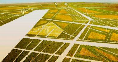 Las pistas de Nazca nos enseñan a dar vida a los desiertos