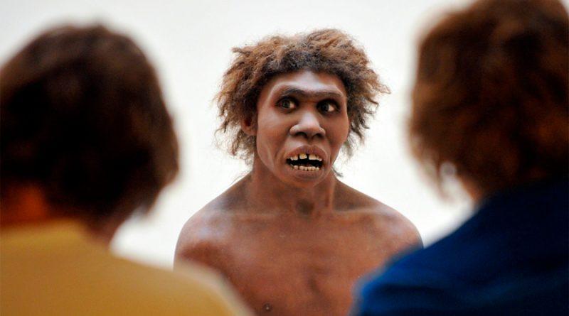 Neandertales tenían un sistema de comunicación vocal tan complejo y eficaz como el lenguaje humano