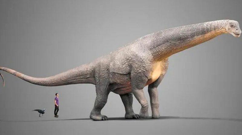 Encuentran titanosaurio de hace 140 millones de años, el más antiguo del mundo