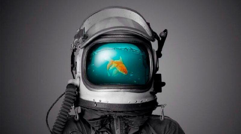 Científicos proponen criar peces en la Luna para la alimentación de una futura colonia