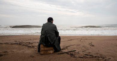 Descubren el lugar de la soledad en el cerebro