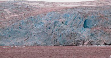 Deshielo en regiones polares aflora suelos fértiles y diversos