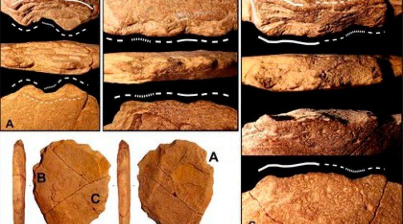 Hallan indicio de que los humanos vivían en América del Sur hace 24 mil años