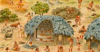 Catedrático mexicano confirma que la biotecnología se creó ¡hace más de 10 mil años!