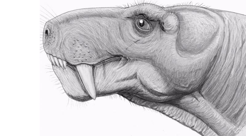 Revelan sorprendente conexión dental entre dinosaurios y mamíferos