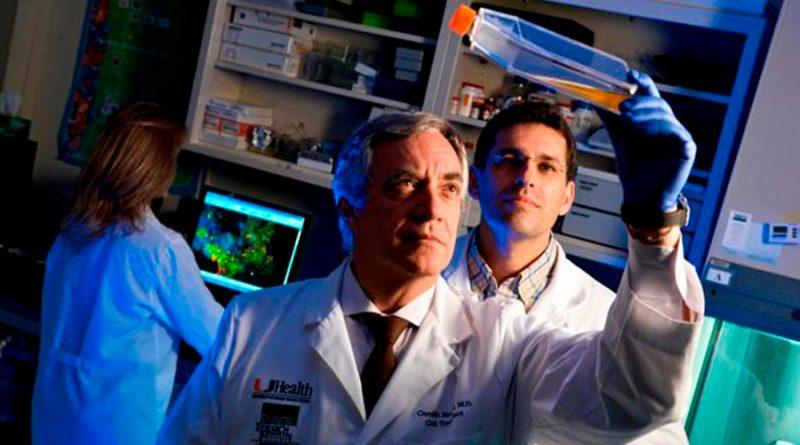 Células madre de tejido umbilical reducen riesgo de muerte en pacientes de covid-19, según estudio