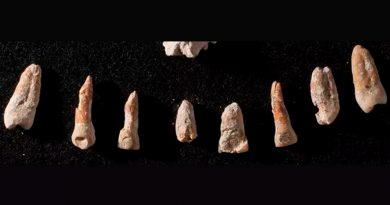 Auge y ocaso de un dignatario maya relatado por sus huesos
