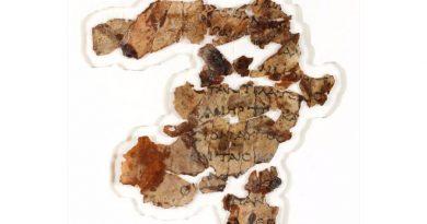 Se descubren más trozos de manuscrito del Mar Muerto 60 años después