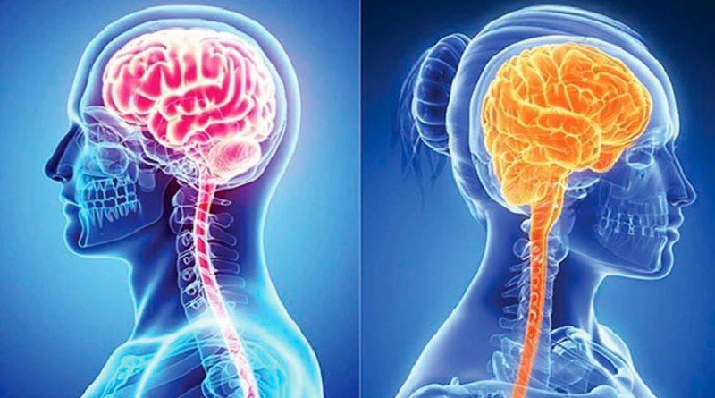 Mujeres y hombres procesan el dolor de forma diferente en el cerebro