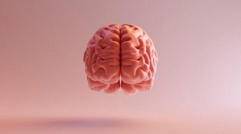 Fugas en la barrera que separa a la sangre del cerebro empeoran nuestra memoria