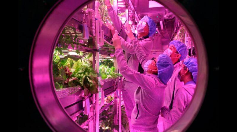 Reproducen cómo es vivir en la Luna y pasan 370 días de encierro en un laboratorio subterráneo