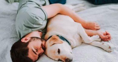¿Se duerme mejor con mascotas? Esto dice la ciencia