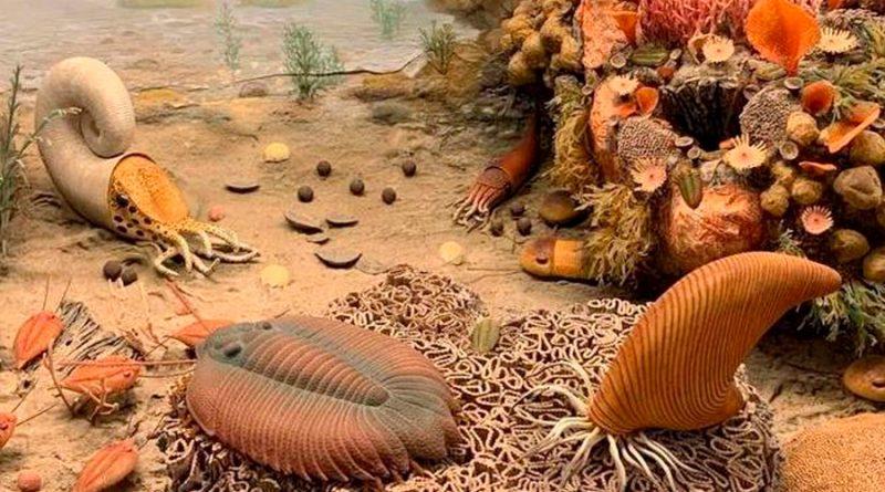 Criaturas de 450 millones de años respiraban en las patas