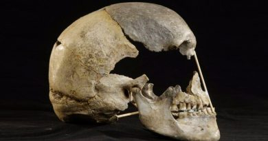Un ancestro neandertal aporta el genoma humano moderno más antiguo