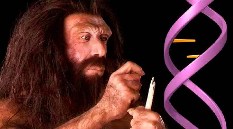 Todas las personas fuera de África llevan entre 2 y 3% de ADN neandertal, dice estudio