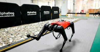 Conoce a los AlphaDog: perros robóticos con inteligencia artificial y conectividad a velocidad 5G