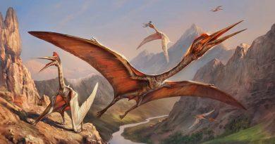 Reptiles voladores sostenían grandes cuellos con vértebras en espiral