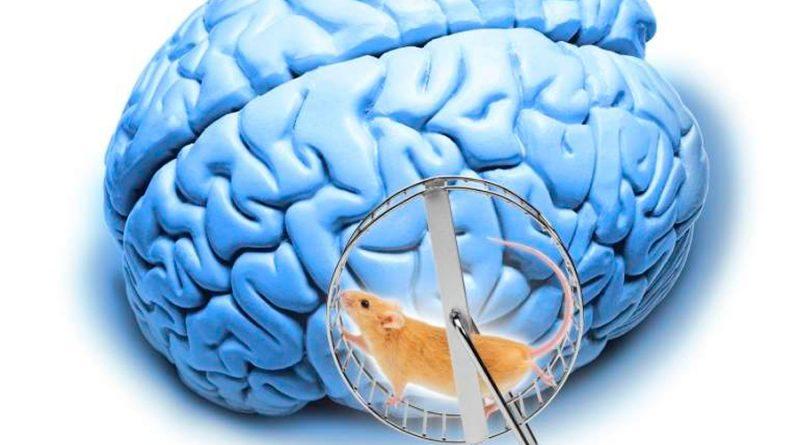 Molécula activada por la luz elimina en ratones una proteína que causa Alzheimer
