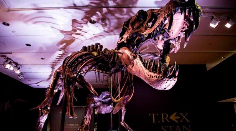 ¿Cuántos Tiranosaurios rex hubo? Unos 2 mil 500 millones