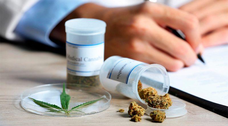 Científicos mexicanos a la espera de las normas para desarrollar fármacos del cannabis