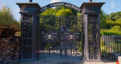 The Poison Garden, el jardín más peligroso del mundo, en donde todas las plantas son venenosas