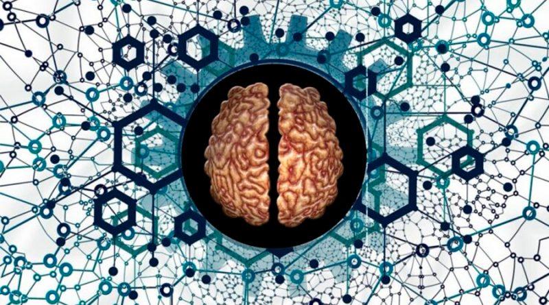 Las neuronas son la Internet del cuerpo humano