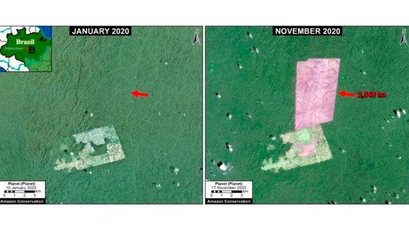 La Amazonía perdió 2.3 millones de hectáreas en 2020