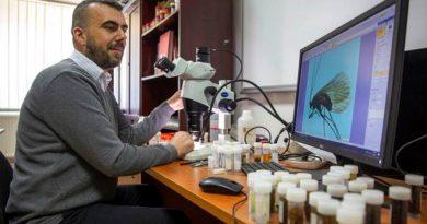 Biólogo de Kosovo descubre insecto; lo llama coronavirus