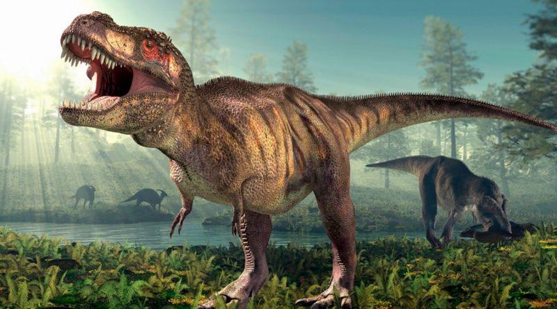 Confirman a qué velocidad caminaba el temible Tiranosaurio Rex: 4.6 km/h