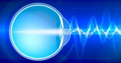 La retina interpreta la luz para informar al cerebro cómo es el mundo