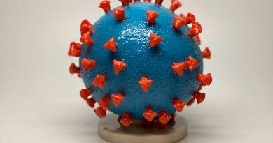 Un estudio asegura que el coronavirus es una enfermedad vascular y no respiratoria