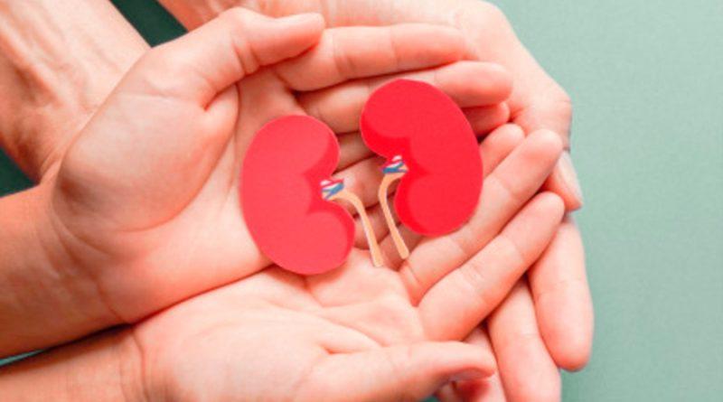 Más de17 mil mexicanos esperan trasplante de riñón por afectación renal crónica: Cenatra