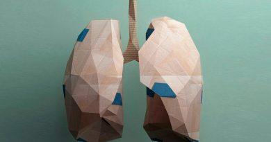 Descubren un mecanismo de regeneración del tejido pulmonar