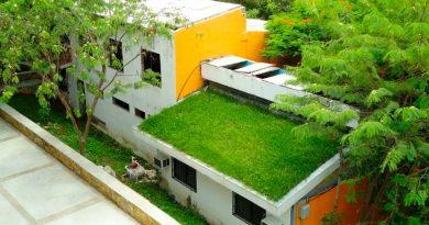 Crean mexicanos techos ecológicos y baratos que refrescan hasta 17 grados
