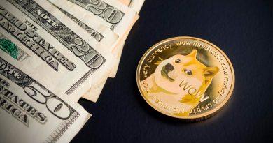 3 diferencias entre el bitcoin y el dogecoin, ¿las conoces?