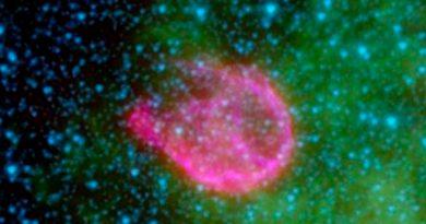 Hallan isótopo extraterrestre en el fondo marino; lo relacionan con las supernovas